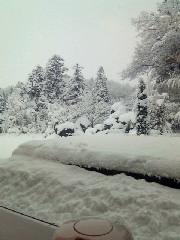 現在の積雪(<br />  田上町)